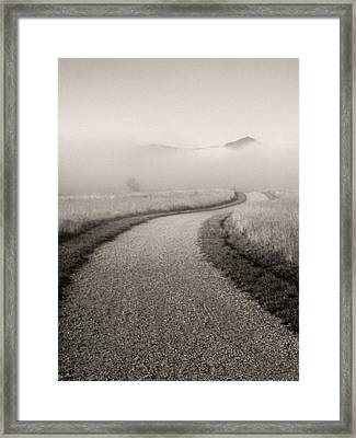 Winding Path And Mist Framed Print by Marilyn Hunt