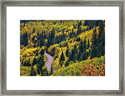 Winding Road Framed Print by Allen Beatty