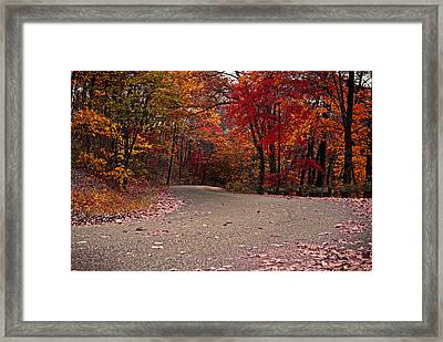 Winding Road Framed Print by Caitlyn Hymer