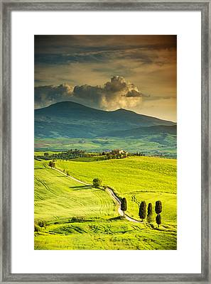 Winding Road In Tuscany Framed Print by Gehringj