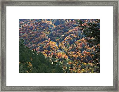 Winding Road Smoky Mountains Framed Print by Robert Anderson