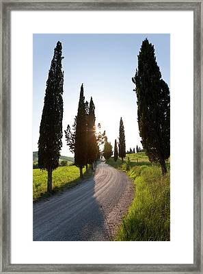 Winding Road, Tuscany, Italy Framed Print by Peter Adams