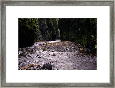 Winding Through Oneonta  Gorge Framed Print by Jeff Swan