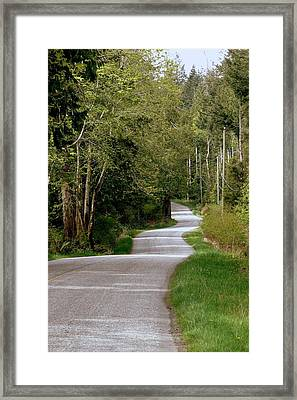 Winding Your Way Home Framed Print by Annie  DeMilo