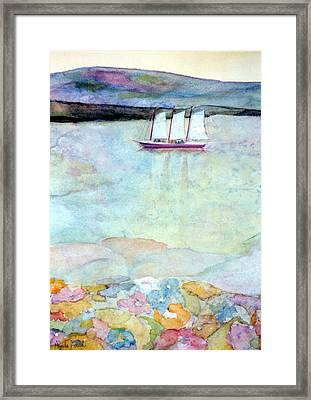 Windjammer Framed Print by Pamela Parsons