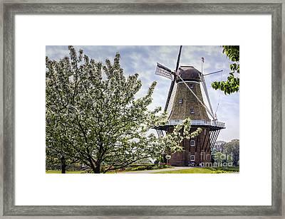 Windmill At Windmill Gardens Holland Framed Print