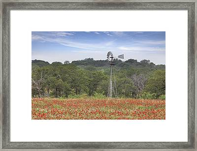 Windmill In A Field Of Texas Wildflowers Framed Print