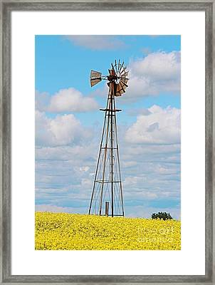 Framed Print featuring the photograph Windmill In Canola Field by Ann E Robson