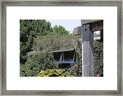 Windoew Framed By Garden Plants Framed Print by Linda Phelps
