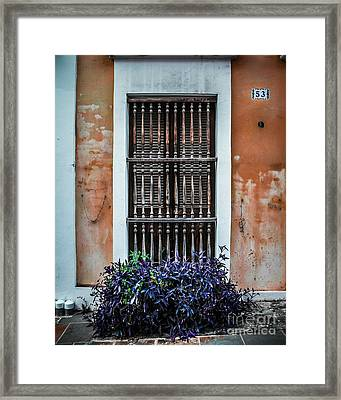 Window 53 Framed Print by Perry Webster