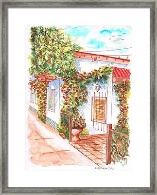 Window And Plants In San Luis Obispo - California Framed Print