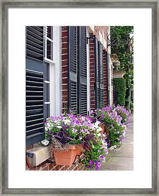 Window Box 2 Framed Print by Sarah-jane Laubscher