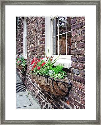 Window Box 3 Framed Print by Sarah-jane Laubscher