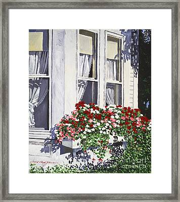 Window Box Colors Framed Print by David Lloyd Glover
