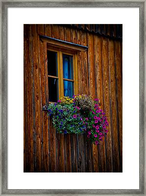 Window Box Framed Print