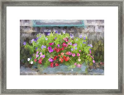 Window Box Painterly Effect Framed Print by Carol Leigh