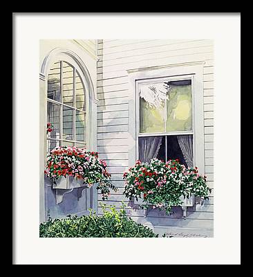 Impatiens Flowers Framed Prints