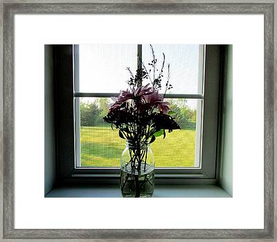 Window Candy Framed Print by Will Boutin Photos