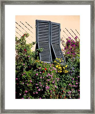 Window Flowers Of Lucca Framed Print