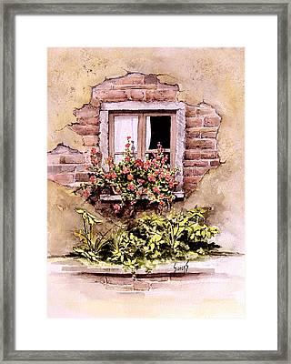 Window Flowers Framed Print by Sam Sidders