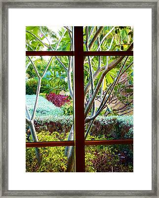Framed Print featuring the photograph Window Garden by Amar Sheow