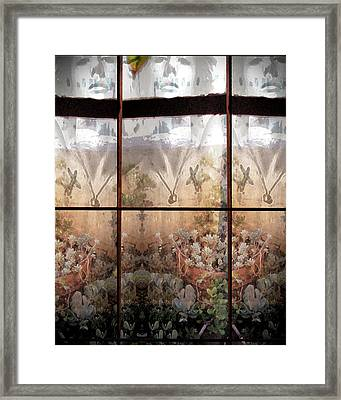 Window Garden Framed Print