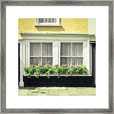 Window Garden Framed Print by Tom Gowanlock