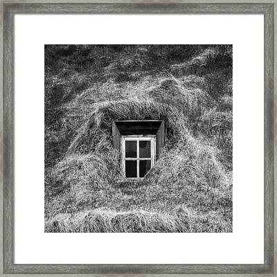 Window In Nature Framed Print