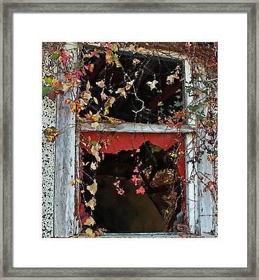 Framed Print featuring the photograph Window Of A Time Gone By by Ellen Tully