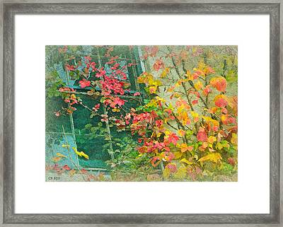Window Of Autumn Framed Print