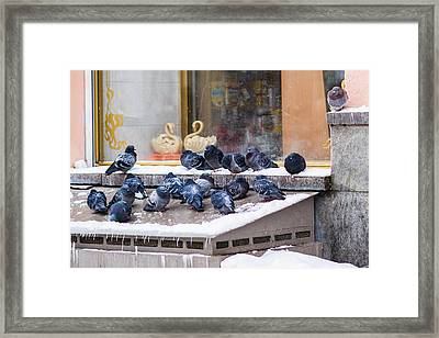 Window Of Opportunities 2 - Featured 3 Framed Print by Alexander Senin