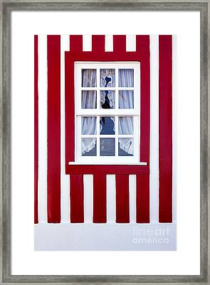 Window On Stripes Framed Print by Carlos Caetano