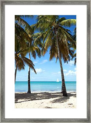 Window On The Caribbean Framed Print by Matteo Colombo
