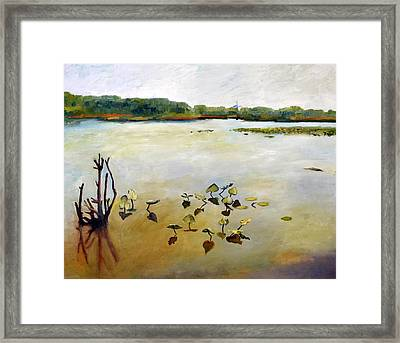 Window On The Waterfront Framed Print by Michelle Calkins