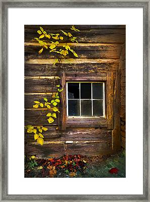 Window To The Soul Framed Print by Debra and Dave Vanderlaan
