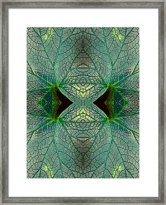 Window To The Unknown Framed Print