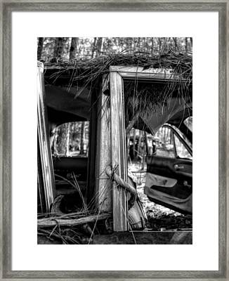 Window Vine In Black And White Framed Print by Greg Mimbs