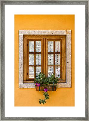 Window With Flowers Framed Print