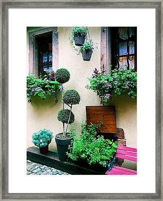 Windows And Doors 18 Framed Print
