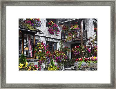 Windows Of Flowers Framed Print