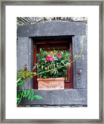 Windowsill Framed Print