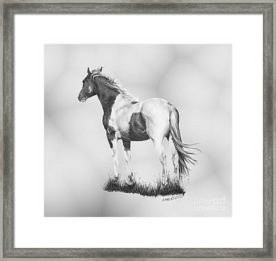 Winds Of Change Framed Print by Marianne NANA Betts