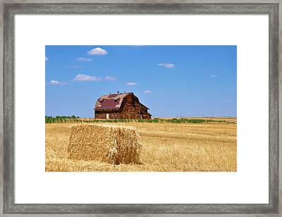 Windswept And Lonely Colorado Barn Framed Print