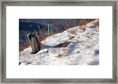 Windswept  Framed Print by JC Findley