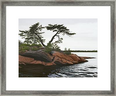 Windswept Framed Print by Kenneth M  Kirsch