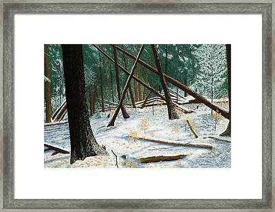 Windswept Woods Framed Print