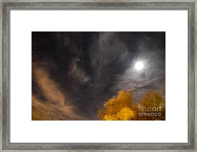 Windy Night Framed Print