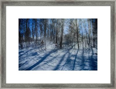 Windy Winter Framed Print