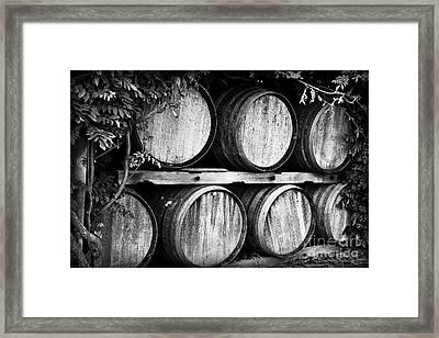Wine Barrels Framed Print by Scott Pellegrin