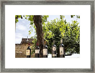Wine Bottle Row Framed Print by Georgia Fowler